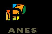Pia's Panes